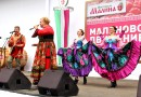 Фестиваль Малины — Рязанская Область — 2018